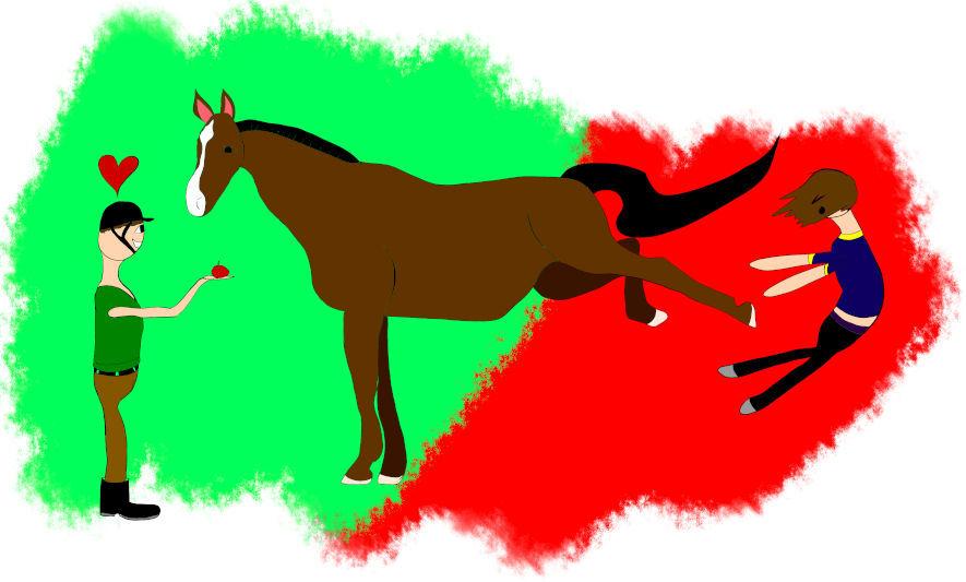 Pferd als Stressor